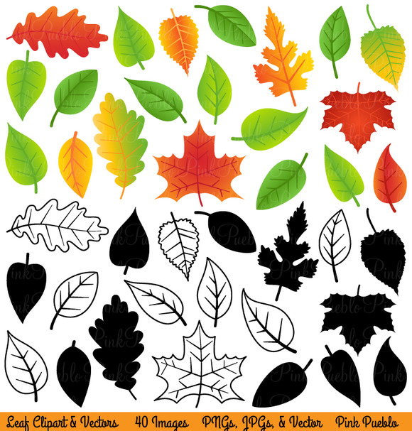 Leaf Clipart And Vectors
