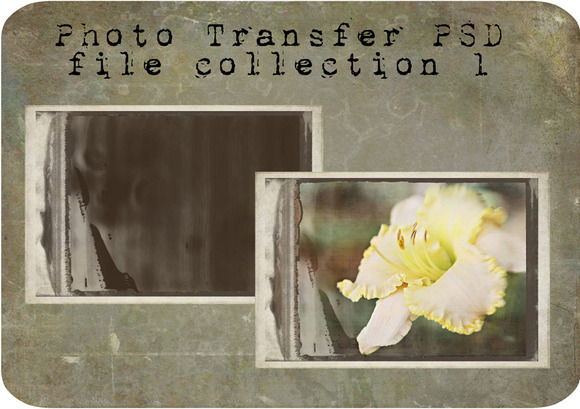 Photo Transfer PSD Files Set 1