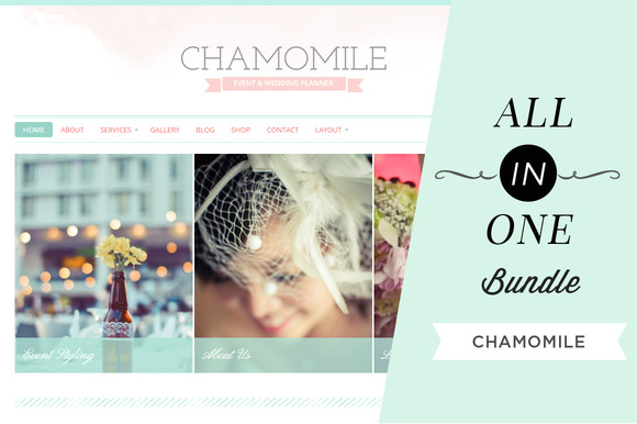 All In One Bundle Chamomile