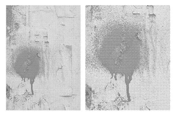 Halftone Textured Wall Vector