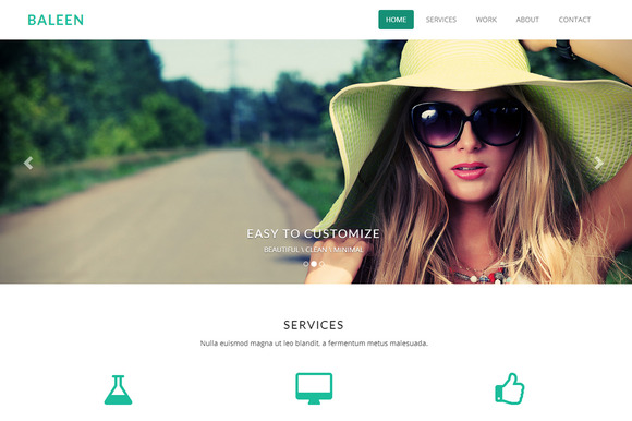 Baleen One Page Bootstrap Template