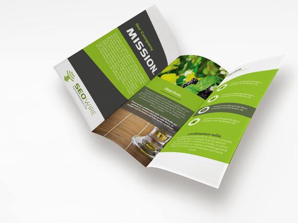Seo Wire Tri-Fold Brochure