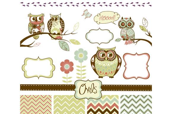 Owls Clip Art And Elements Set