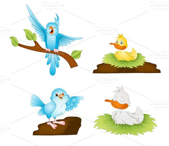 Cartoon Birds Illustrations