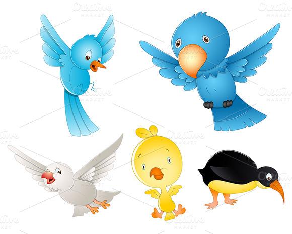 Cutest Birds