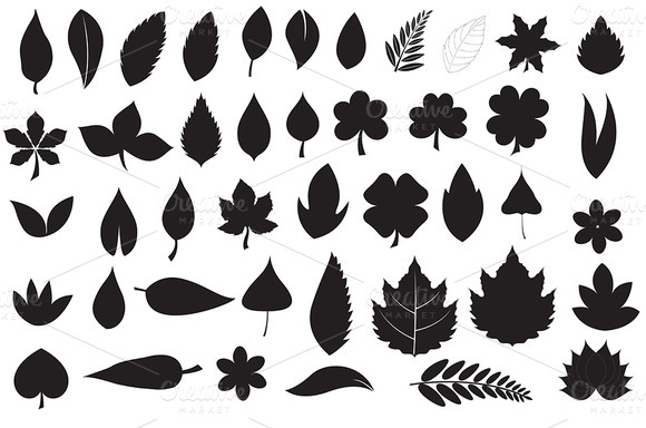 Leaves Silhouettes Collection