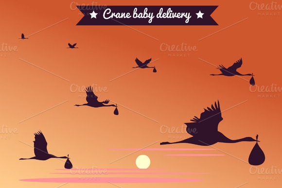 Crane Baby Delivery