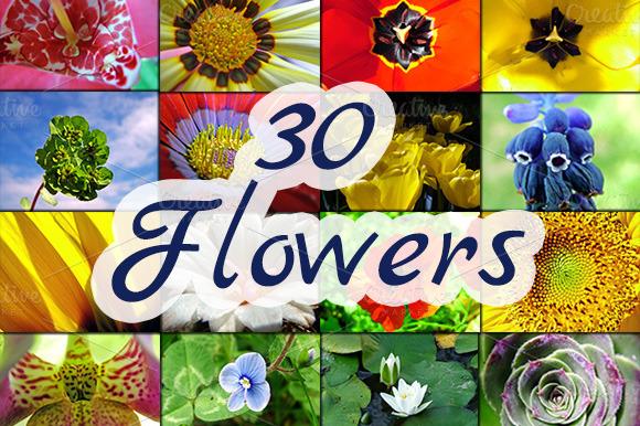 30 Flowers