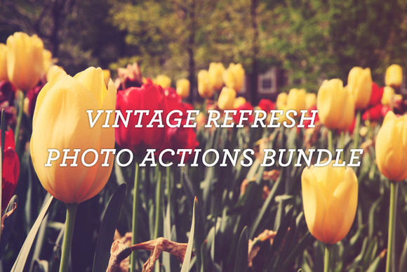 Vintage Refresh Photo Actions Bundle
