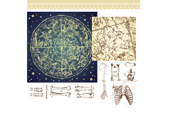 Human Skeleton Bones Celestial Map
