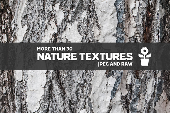 30 Nature Textures