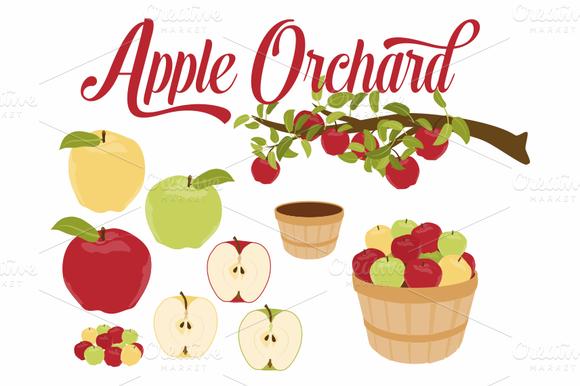 Apple Branch Basket Vector