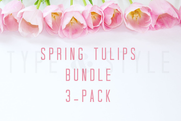 Styled Stock Photo Tulip Bundle