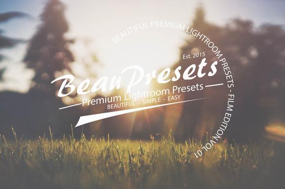 Beautiful Film Presets Vol 1