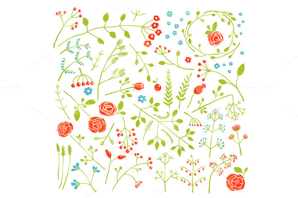 Field Flowers And Plants Decoration