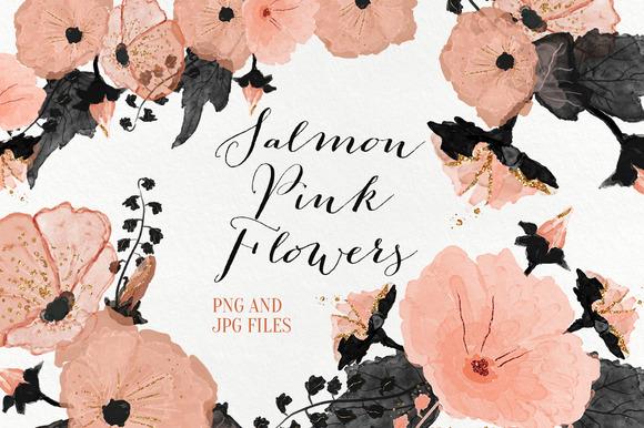 Salmon Pink Flowers