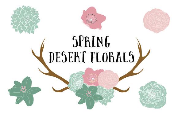 Spring Desert Florals