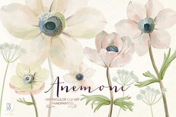 Watercolor Anemones
