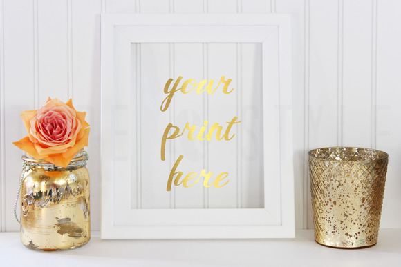 2 Pack Styled Stock Photo Coral