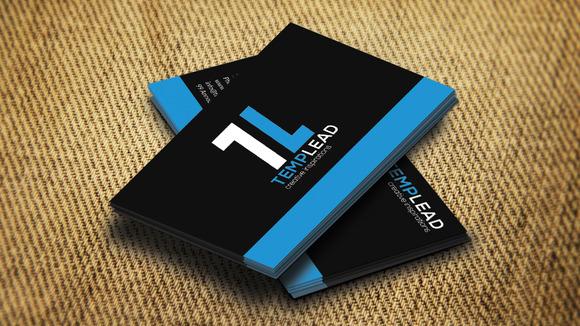 Corporate Business Card SE0243