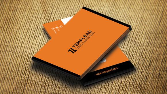 Corporate Business Card SE0251