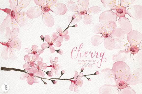 Watercolor Cherry Blossom Spring