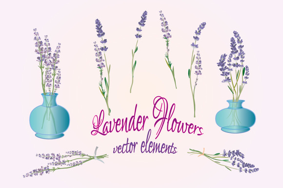 Lavender Flowers Vector Elements