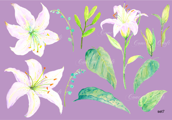 Watercolor Wedding Clipart Lily