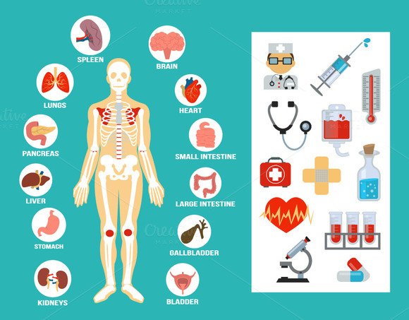 Vector Flat Anatomy Icons Set