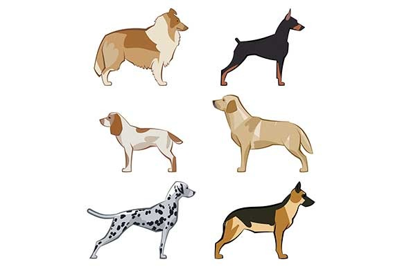Set Of Colored Vector Dogs