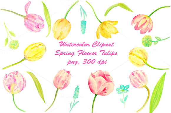 Watercolor Clip Art Tulips