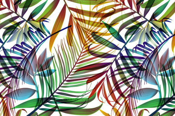 Tropical Colorful Palm Jungle Leaves