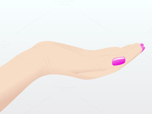 Woman Hands Vector Illustration