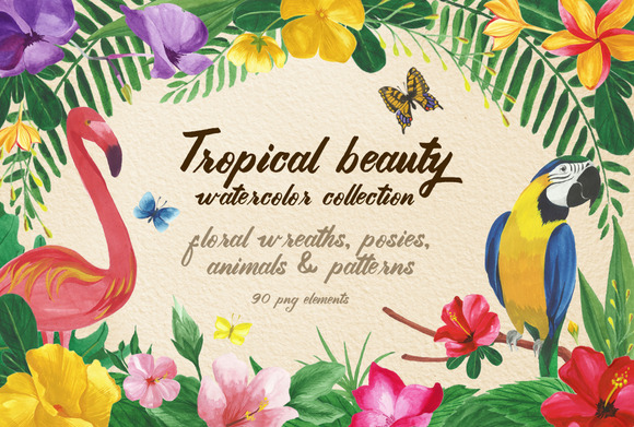 Tropical Beauty Png Elements