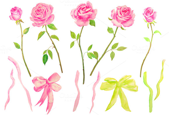 Watercolor Standard Pink Roses