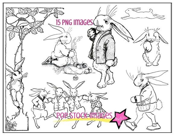 Spring Bunny Rabbits PNG Image Set