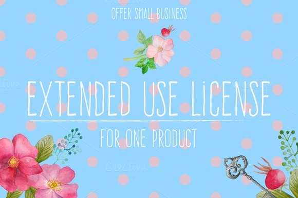 Extended License Eisfrei
