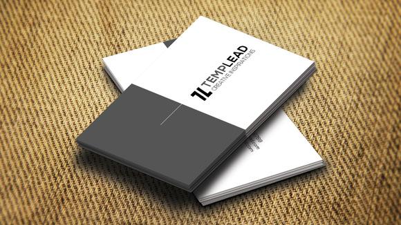 Corporate Business Card SE0280