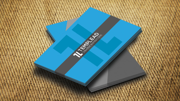 Corporate Business Card SE0285