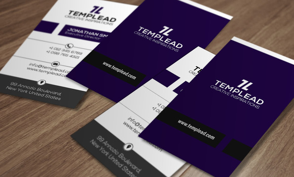 Corporate Business Card SE0291