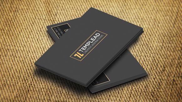 Corporate Business Card SE0298