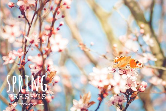 60 Spring Presets