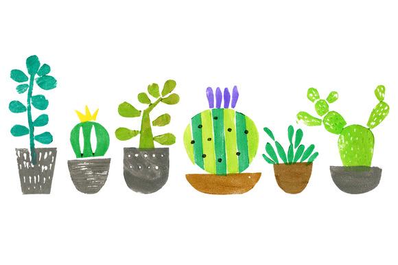 Cacti Succulents Set