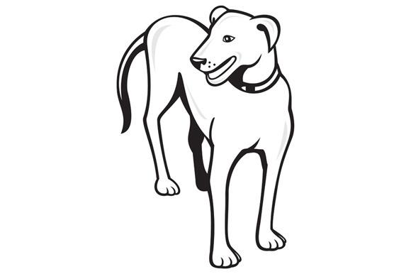 Dog Standing Front Cartoon