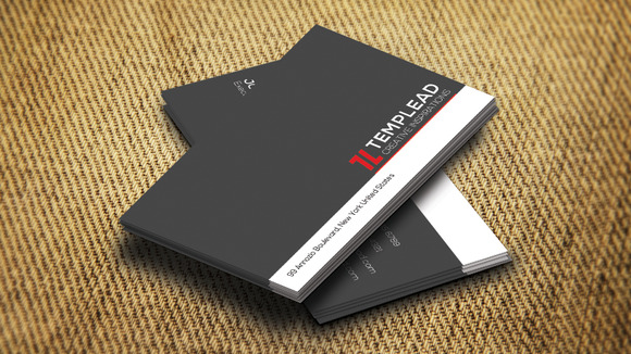 Corporate Business Card SE0313