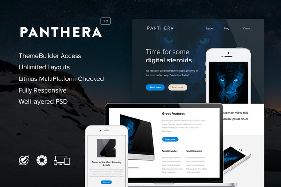 Panthera Email Builder Access