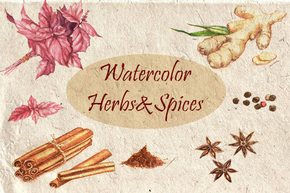 Watercolor Herbs Spices