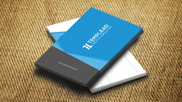 Corporate Business Card SE0328