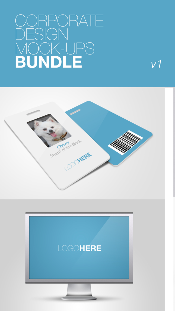 Mockup Stationary For Corporate