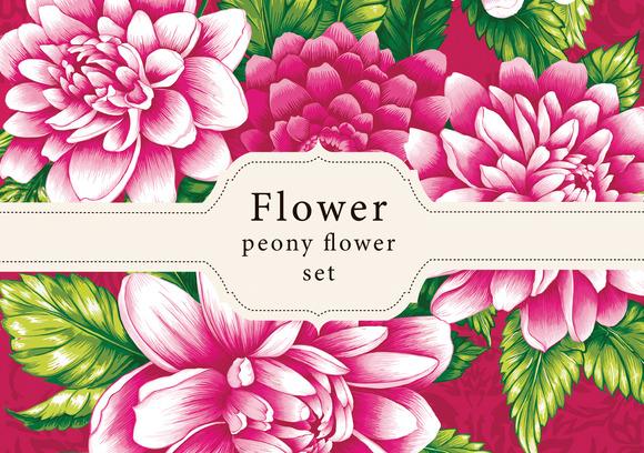 Peony Flower Designs
